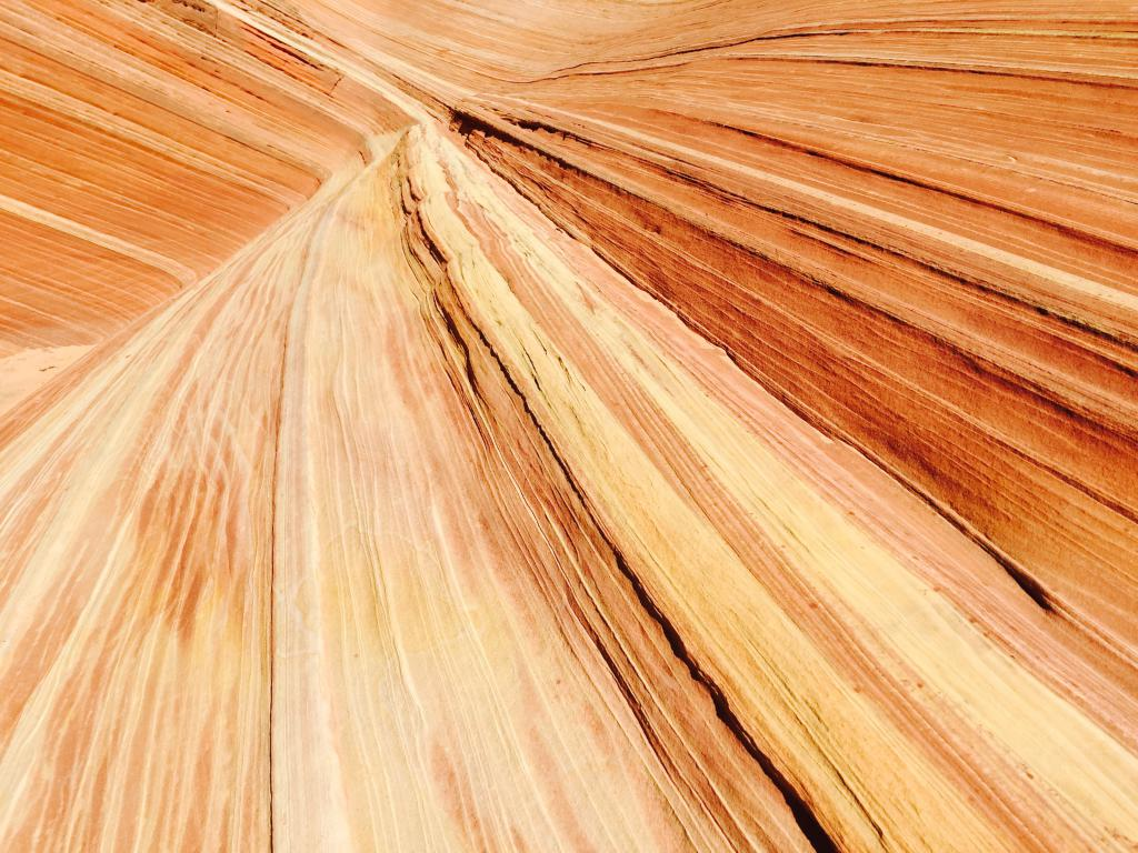 the-wave-arizona-utah-the-art-of-travel-hike-4