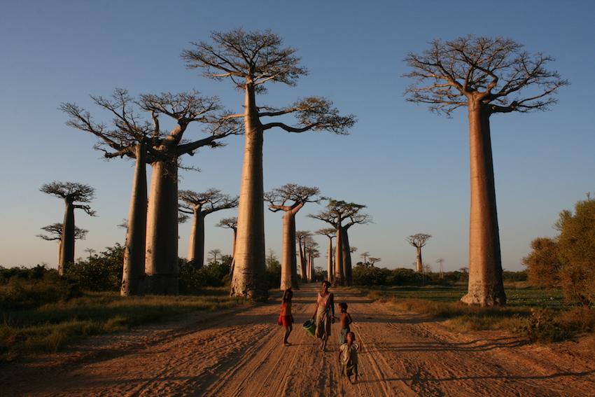 World Traveller Kristin Tice Studeman The Art of Travel Madagascar