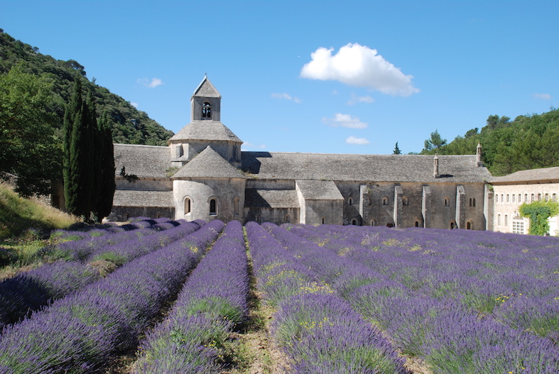 Travel Bucket List The Art of Travel Lavender Field Provence Luberon Sénanque