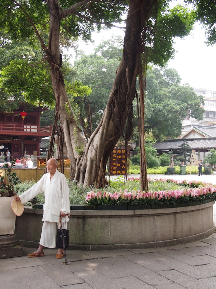Guangzhou City Guide The Art of Travel Gentleman Guangxiao Temple