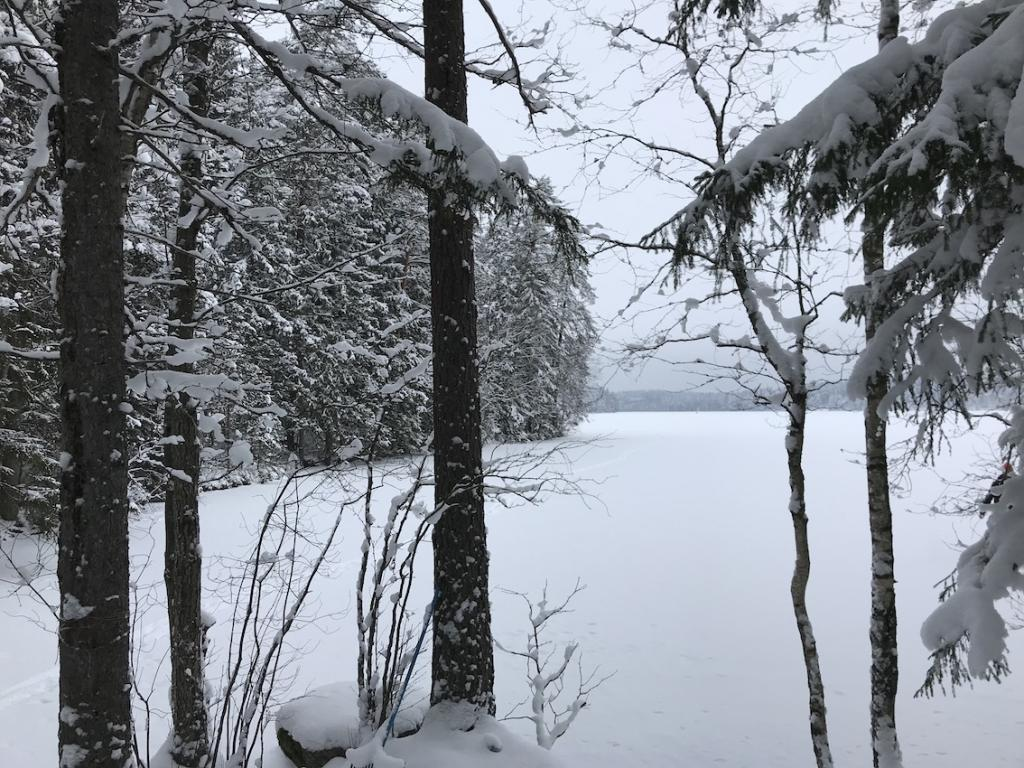 Five Days in Finland The Art of Travel Nuuksio National Park lake forest