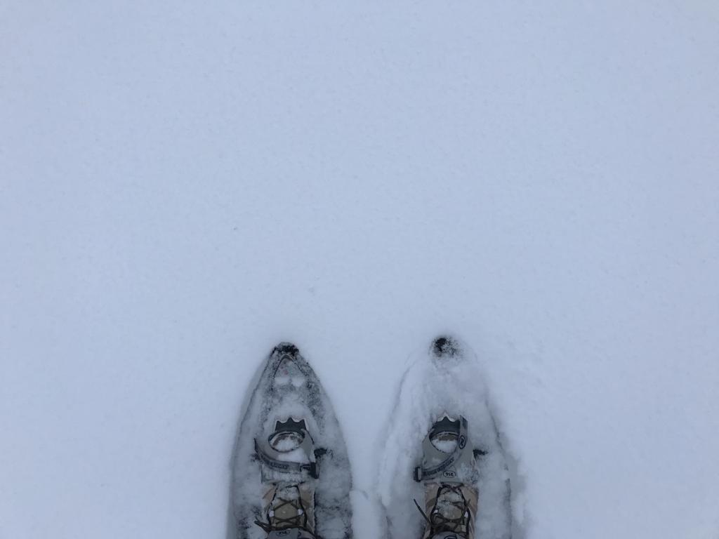 Five Days in Finland The Art of Travel snow shoes
