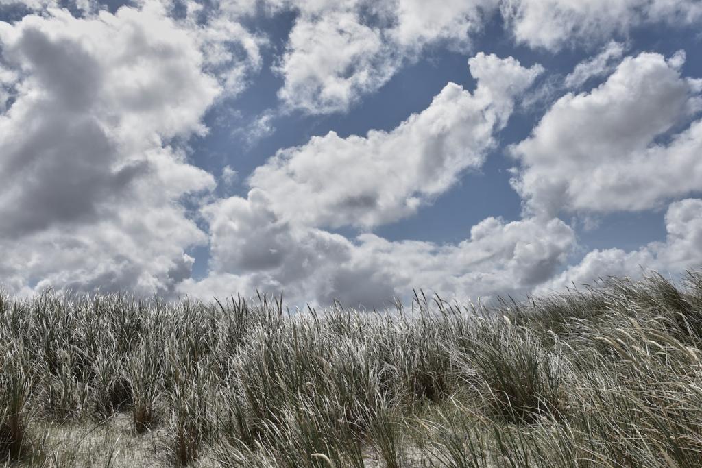Travel guide to South West Denmark The Art of Travel sand dune Vesterhavet