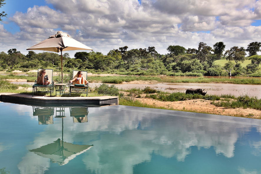 Safari in a private game reserve in South Africa The Art of Travel Mala Mala Game Reserve pool rhinoceros