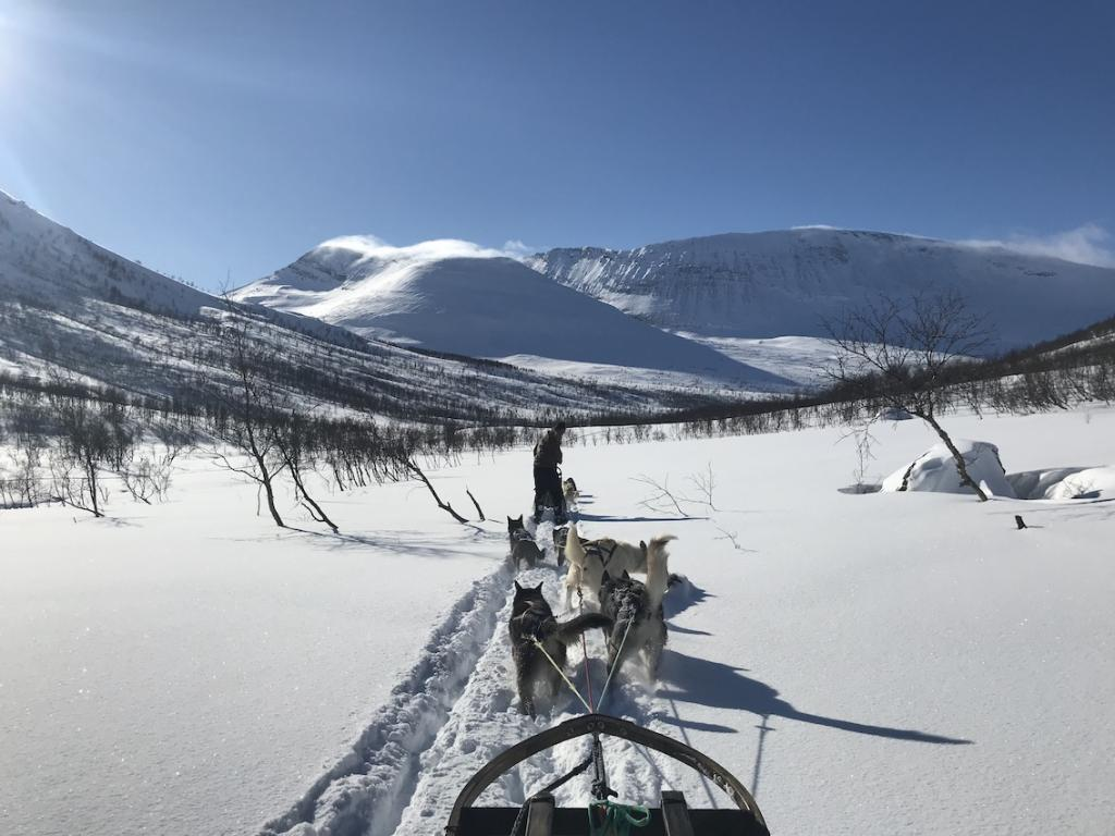Travel guide to Tromsø in Norway The Art of Travel Dogsledding Mountains