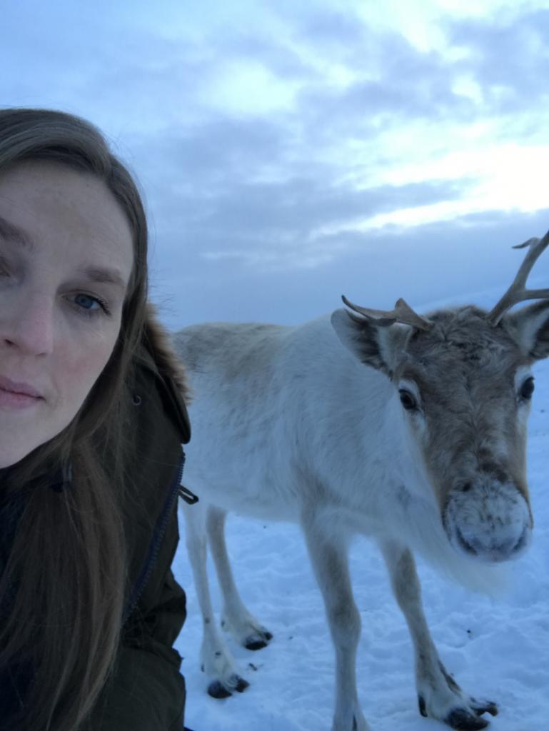 Travel guide to Tromsø in Norway The Art of Travel Reindeer selfie