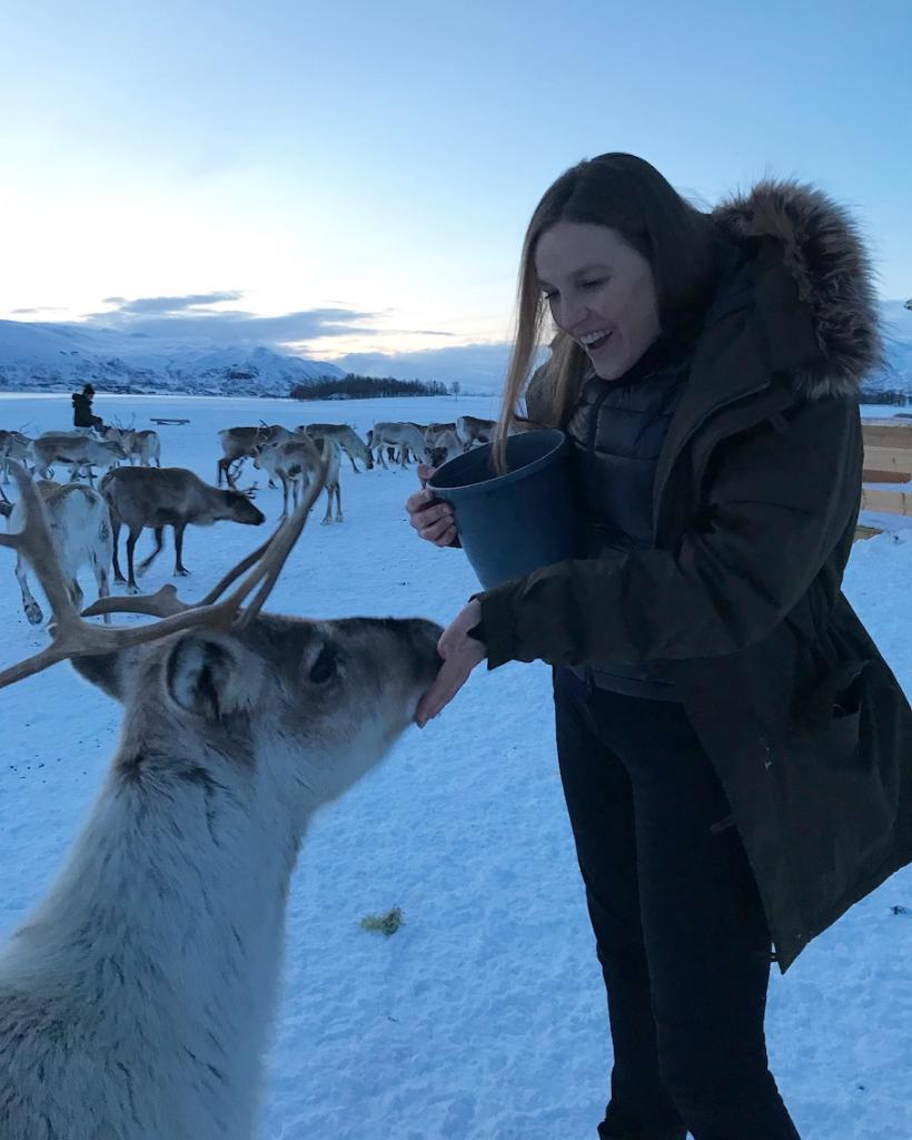 Travel guide to Tromsø in Norway The Art of Travel reindeer feeding